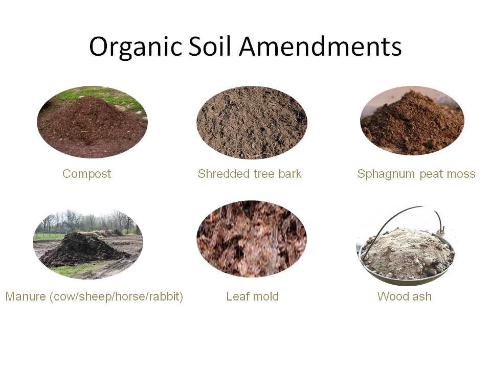 This image has an empty alt attribute; its file name is organic-soil-amendments.jpg