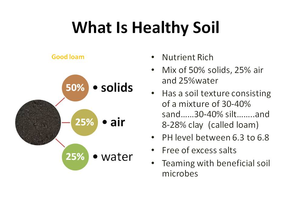 This image has an empty alt attribute; its file name is what-is-healthy-soil.jpg